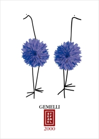 "T-shirt illustration: ""Gemelli"""